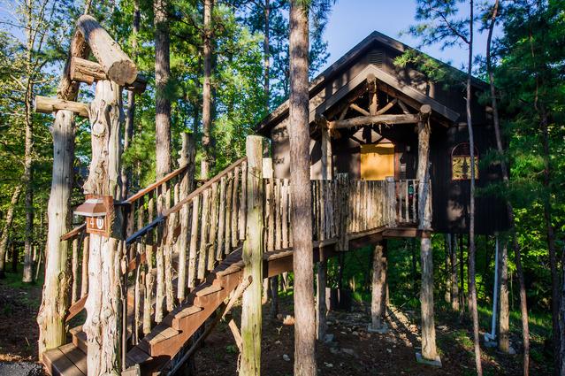 Merveilleux Eureka Springs Treehouses